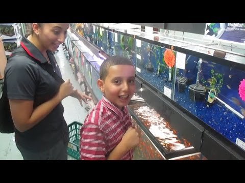 Dare At the Pet Store!!!