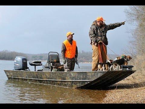 Hunting Swamp Rabbits With Beagles