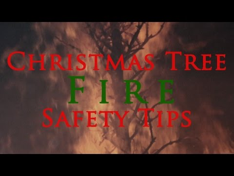 Christmas Tree Fire Safety Tips From The VBFD - YouTube