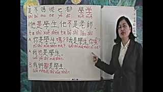 Chinese Class Studio-Grammar-是shì, 不bù, 嗎ma, 呢ne, 也yě, 都dou