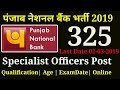 PNB Bank Vacancy(325) 2019|punjab national bank recruitment specialists 2019|pnb so recruitment 2019
