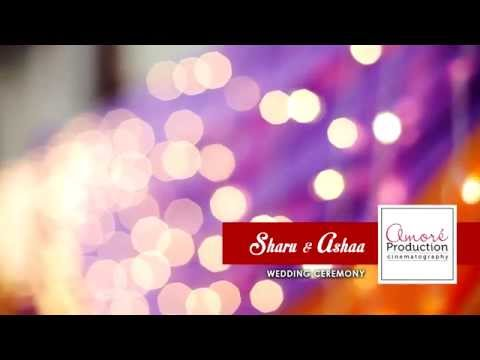 Sharu & Ashaa Hindu Wedding Video Trailer