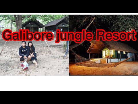 Galibore Jungle Resort