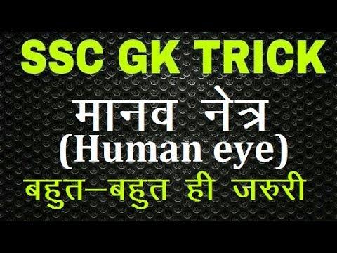 human eye / #gk trick / #ssc