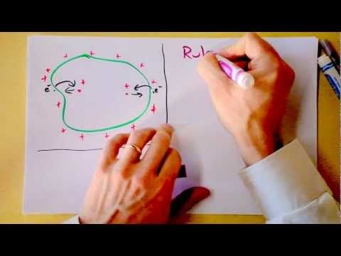 Conductors in Electrostatic Equilibrium | Rules for Electric Fields | Doc Physics