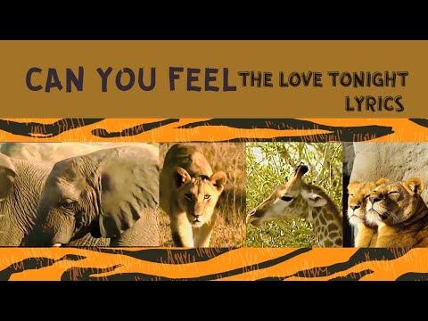 THE LION KING BISA ANDA MERASA CINTA (LIRIK)