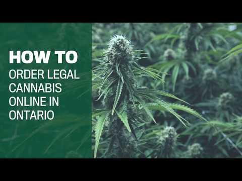 How to buy legal Ontario weed online in 7 steps