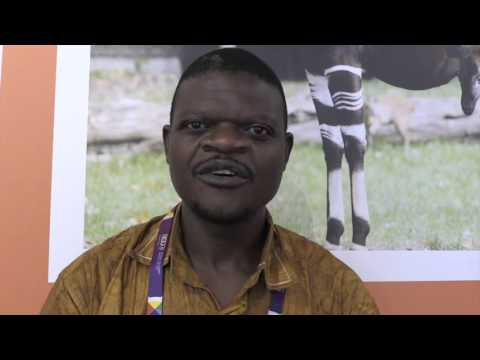 A land to Discover: Democratic Republic of Congo Expo 2015