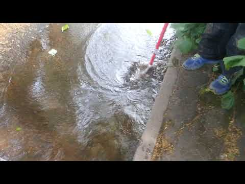 Post 10 inspired - unclogging a blocked drain in Birmingham