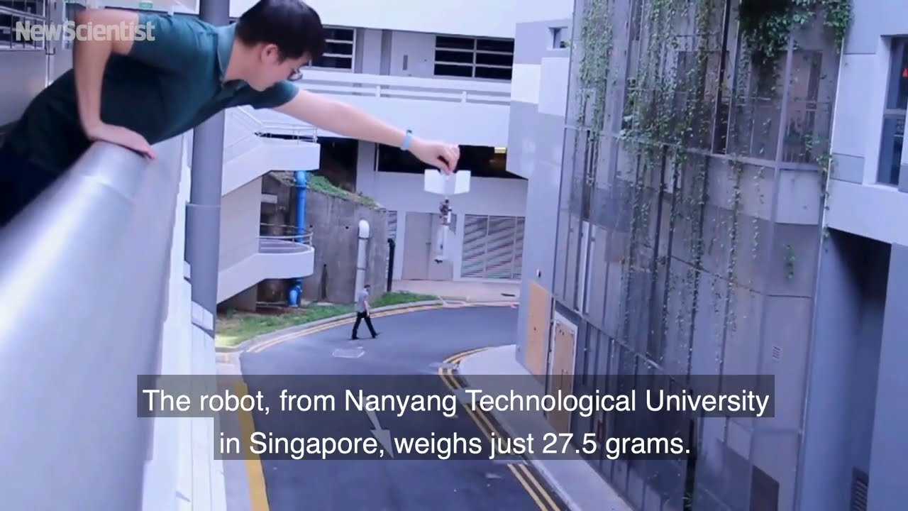 Flapping drone flies and darts around like a bird