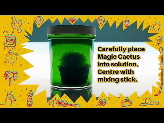 Magic Cactus Growing Kit