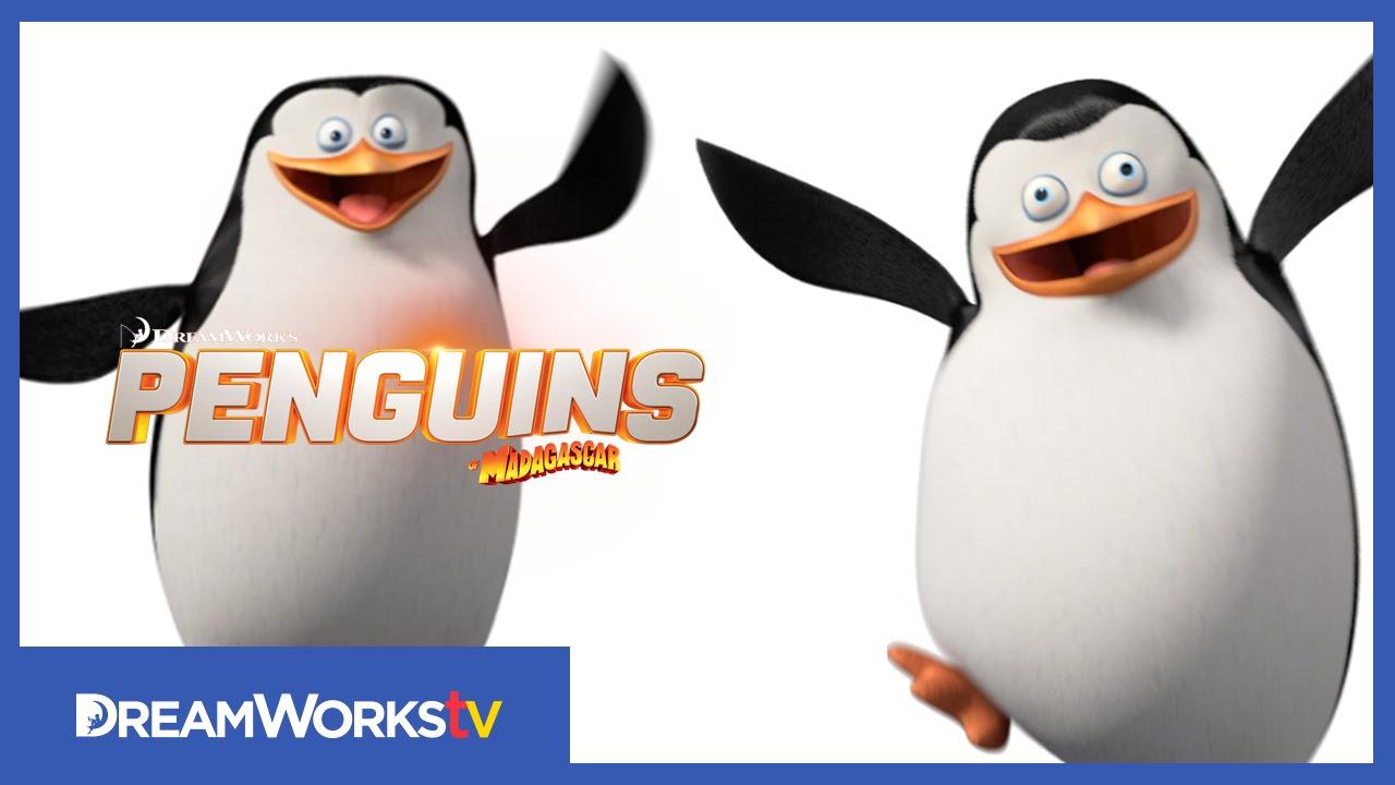 пингвины из мадагаскара танец шкипера