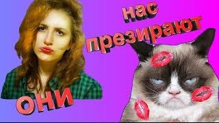 Как коты реагируют на поцелуи.