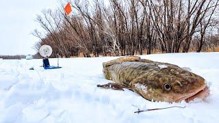 Оно того стоило Рыбалка на Иртыше 2021