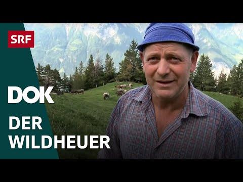 Der Wildheuer | Das Leben eines Bergbauern hoch über dem Urnersee