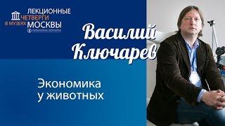 "Василий Ключарев ""Экономика у животных"""