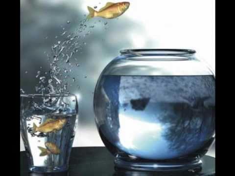 Joshua Radin - One Leap