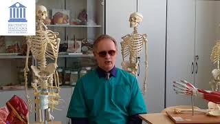 ( Видео объяснение). Курс детского массажа.