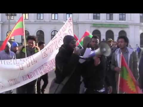#oromo#protests in Norway oslo January 1.13.2017