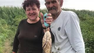 745 Рыбалка на реке Топар в сентябре