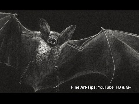 How to Draw a Vampire Bat - Prepare for Halloween!