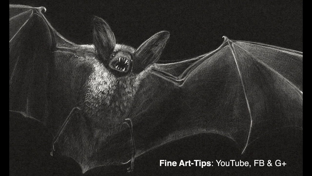 How to Draw a Vampire Bat - Prepare for Halloween! - YouTube