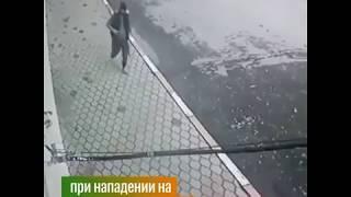 Стрельба в Кизляре на Масленницу