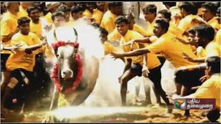 special debate what is the need to conduct jallikattu part i 29 12 2015