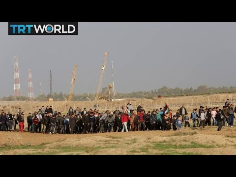 Israel-Palestine Tensions: Palestinians hold weekly protest at Gaza border