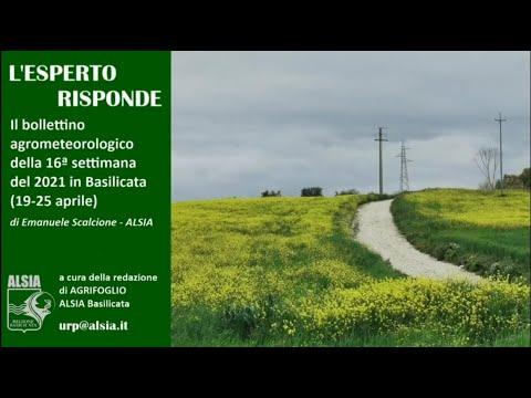 Basilicata, le piogge del 19-25 aprile hanno avvan...