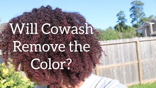Will COWASH Remove Natural Hair Paint  or Color Gel?