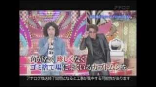 綾部祐二 又吉直樹 ピース.
