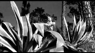 Dil Dhadke Chunariya Sarke - Shakespeare Wallah (1965), Mubarak Begum, Prayag Raj