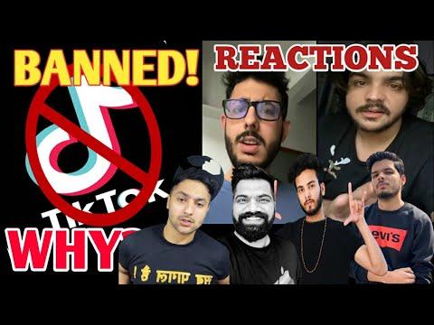 tik-tok-banned!---carryminati,ashish-chanchlani,-harsh-beniwal,-elvish-yadav,guruji-&more-reactions