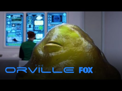 Dr. Claire Finn Sets The Record Straight   Season 1 Ep. 3   THE ORVILLE