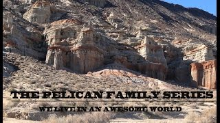 Pelican Family Series - We Live In An Awesome World: Red Rock Canyon State Park, California, USA