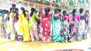BASTAR HALBI DANCE C.G SHADI VIDEO
