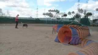 AWEN - MOMENTOS DE DISFRUTE COMPARTIDO [HD]