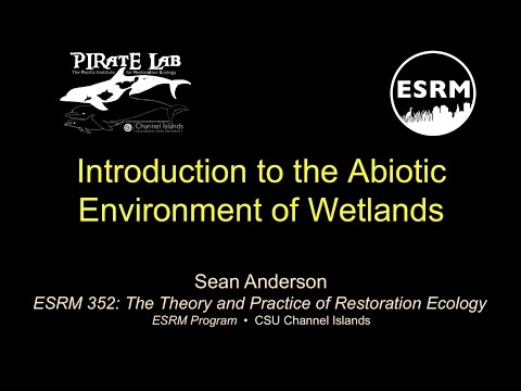 Introduction to Abiotic Wetland Conditions (Part 1)