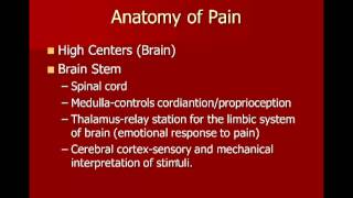 The Physiology of Pain Part 3