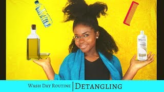 Wash Day Routine| How I Pre-Poo & Detangle Thick/Long 4c Natural Hair
