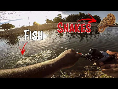Fishing SNAKEY Creek In TULSA For (BIG BASS)!