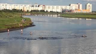 Лето солнце жара Северодвинск