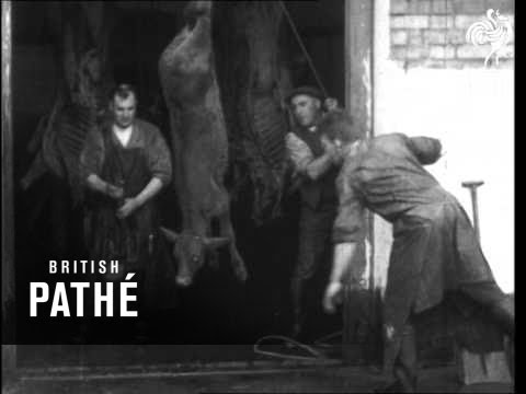 Early Animal Rights Film: Slaughter House (1930-1939)