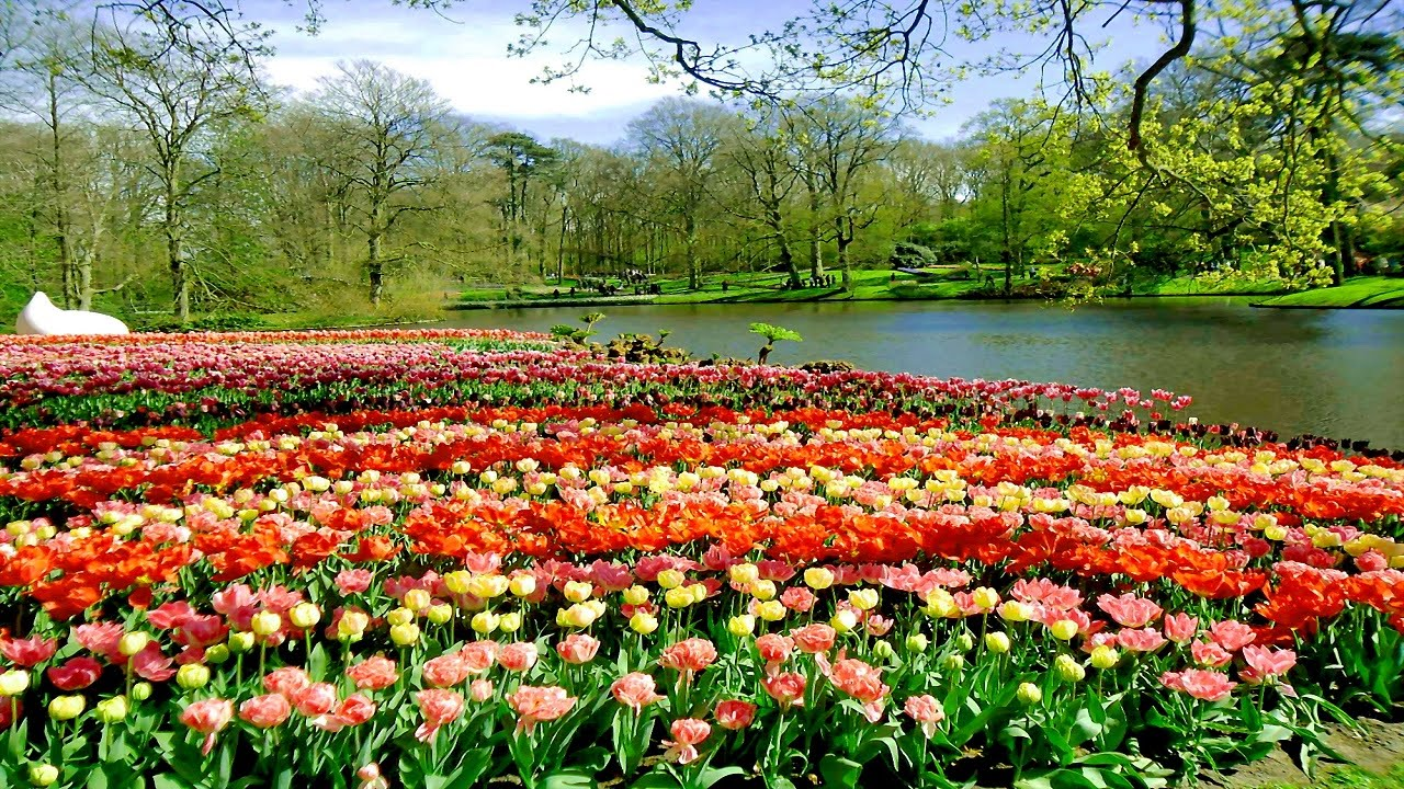 top 10 most beautiful gardens in the world - youtube