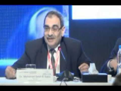 The Egypt Energy & Economy Conference 2013 - Panel 1