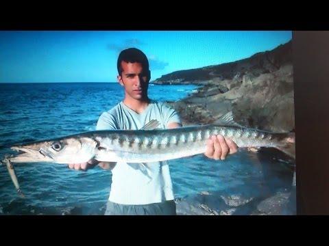 Pesca spinning La Palma 2010 (Viaje a el Hierro)(5