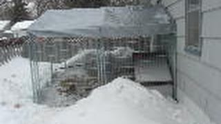 My winter chicken coop. 3-6-14