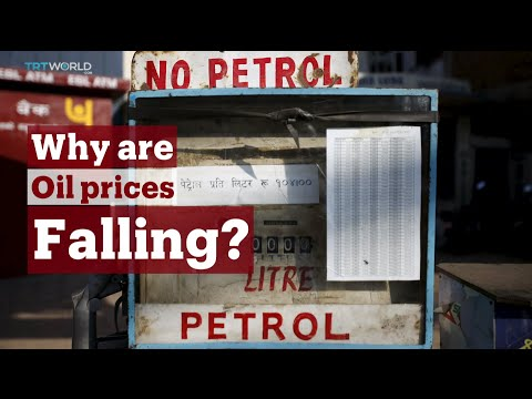 TRT World - World in Focus: Why are oil prices falling?