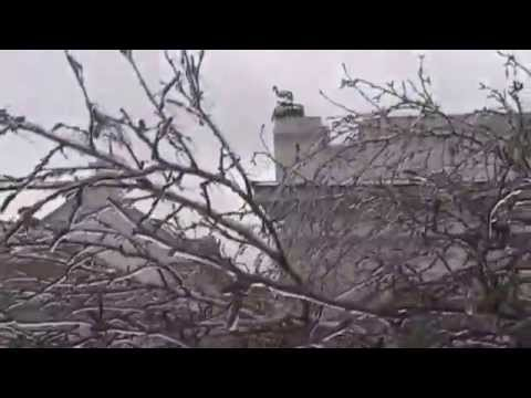 Заозёрное 27 01 2014
